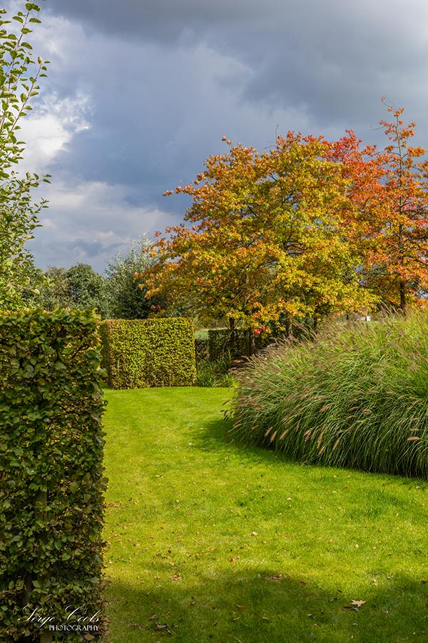 landelijke_tuin-16